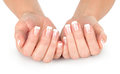 Beautiful woman hands with french manicure Royalty Free Stock Photo