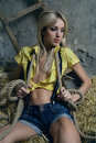 Beautiful woman on hay Royalty Free Stock Photo