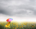 Beautiful woman holding multicolored umbrella in sunflower field and raincloud Royalty Free Stock Photo