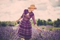 Beautiful woman in lavender field purple dress and hat with basket Royalty Free Stock Image