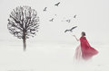 Beautiful woman in medieval dress with birds on foggy field
