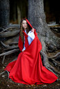 Beautiful woman with red cloak posing in the woods Royalty Free Stock Photos