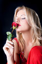 Beautiful woman smelling roses Royalty Free Stock Image