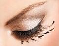 Beautiful womanish eye close up of Stock Photos