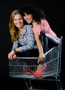 Beautiful women in a shopping trolley Stock Image