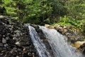 Beautiful woodland stream and waterfall in Summer Royalty Free Stock Images