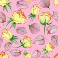 Beautiful yellow and red roses and leaves on pink background. Seamless floral pattern. Watercolor painting.