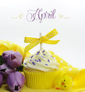 Beautiful yellow spring or easter theme cupcake with seasonal flowers tulips and decorations for the month of april sample Stock Photo