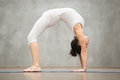 Beautiful Yoga: Bridge pose Royalty Free Stock Photo