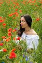 Beautiful young brunette girl wearing white summer dress in popp poppy filed Royalty Free Stock Photo