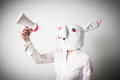 Beautiful young businesswoman mask rabbit megaphone with little on gray background Royalty Free Stock Photography