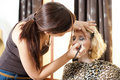 Beautiful young girl having makeup Stock Image