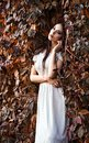 Beautiful young girl in white dress standing among colorful leaves a Stock Images