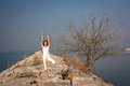 Beautiful young woman practicing yoga on the beach on the rocks and tree vrksasana Stock Photography