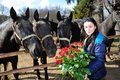 Beautiful young woman with roses and black horses standing bunch of before Stock Photography