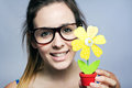 Beautiful young woman showing one artificial daisy portrait of Royalty Free Stock Photo