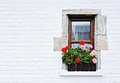 Beautifully arranged window with flowers on white wall of old village house Royalty Free Stock Photo