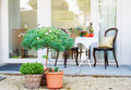 Beautifully decorated small yard with plants Stock Image