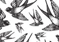 Beautifully detailed vintage style seamless pattern with flying swallow birds . Vector artwork isolated. Elegant tattoo art.