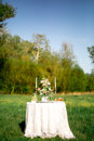 Beautifully laid a festive table for two in the garden with flowers and candles Royalty Free Stock Photos