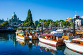 Beautifully restored classic boats gather in the inner harbour of the provincial capital with the parliament buildings in the Stock Image
