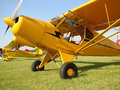 Beautifully restored Classic Piper Super Cub. Royalty Free Stock Photo