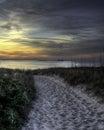 Beauty beyond the dunes chesapeake bay Royalty Free Stock Photos