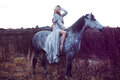 Beauty blondie with horse in the field, effect of toning Royalty Free Stock Photo