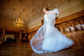 Beauty bride in bridal gown with lace veil indoors Royalty Free Stock Photo