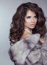 Beauty fashion model girl in mink fur coat beautiful luxury win winter woman isolated on gray background Stock Photos