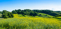 Beauty green hills in Poland Royalty Free Stock Photo