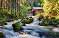 Beauty landscape with river and forest in Austria, Golling Royalty Free Stock Photo