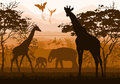 Beauty of nature with wild animals (giraffe, elephant, flamingo, Royalty Free Stock Photo