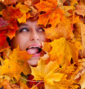 Beauty portrait of beautiful female face with autumn leaves funny Royalty Free Stock Photography
