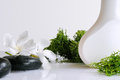 Beauty product with seaweed isolated in white container on a white glass table Stock Images