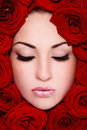 Beauty in red roses Stock Photography