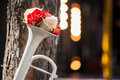 Beauty of roses nice bouquet red and white standing in the white tuba near the tree on the evening background Royalty Free Stock Image