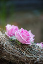 Beauty of roses selective focus on very beautiful lilac sticking into the twisted wreathe like ornament Royalty Free Stock Image