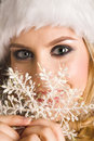 Beauty santa Stock Images