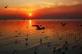 Beauty Sunrises Royalty Free Stock Photo