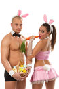 Beaux couples de lapin Images stock