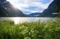 Beauyiful summer evening near lake lovatnet in jostedalsbreen national park norway Stock Photo