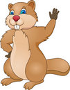 Beaver cartoon Royalty Free Stock Images