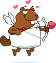 Beaver Cupid Royalty Free Stock Image