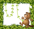 A beaver and the empty frame with vine plants illustration of on white background Royalty Free Stock Image