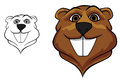 Beaver mascot head in cartoon style for sport team design Royalty Free Stock Photography