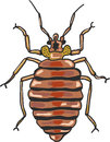 Bed bug vector clip-art illustration image
