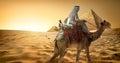 Bedouin on camel in desert Royalty Free Stock Photo