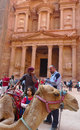 Bedouin camel in front of the ancient treasury in petra jordan november on november has been a unesco world Stock Image
