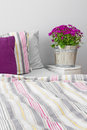 Bedroom decorated with purple flowers modern and cushions Stock Photos